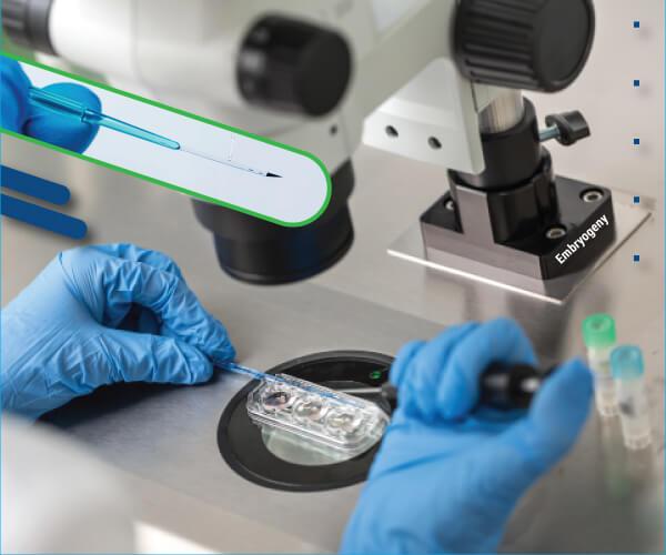 EmbryoVitrificationAndWarming