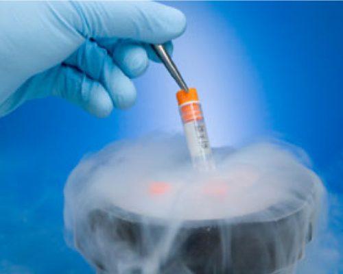 Oocyte & Embryo Vitrification/Cryopreservation